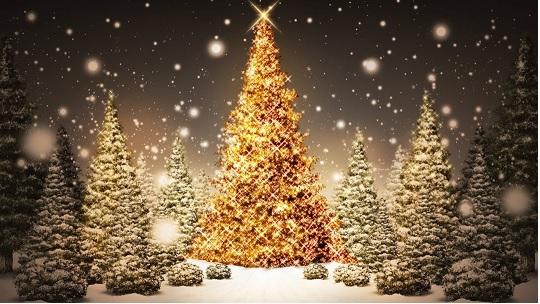 fantastic-beautiful-christmas-tree